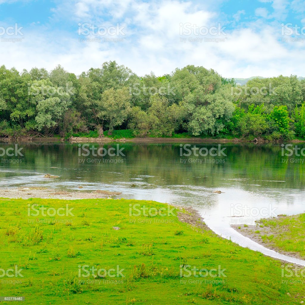 river with inflows and floodplain forest stock photo