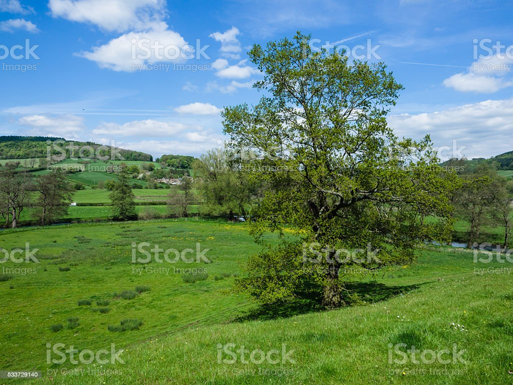 River Wye , at Rowsley stock photo