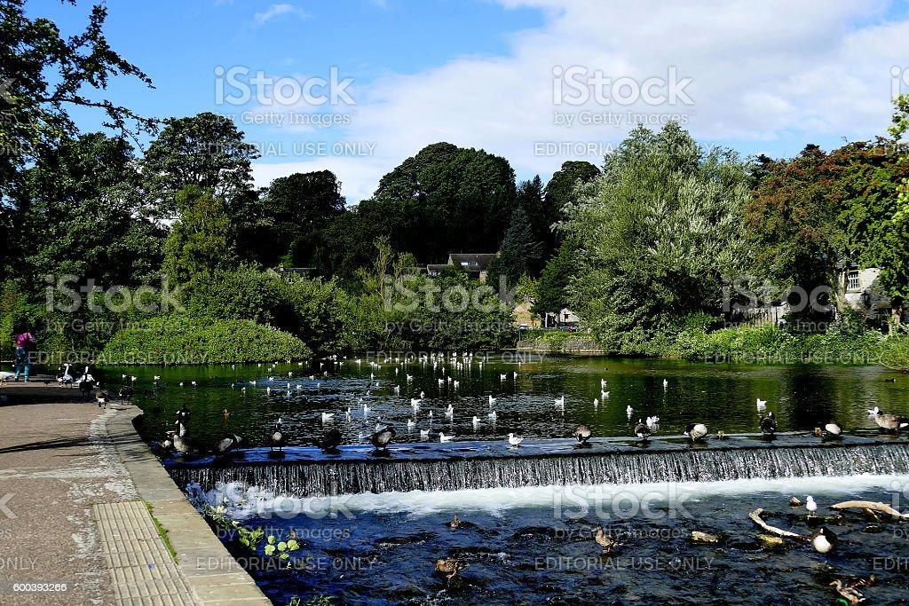 River Wye, Bakewell. stock photo