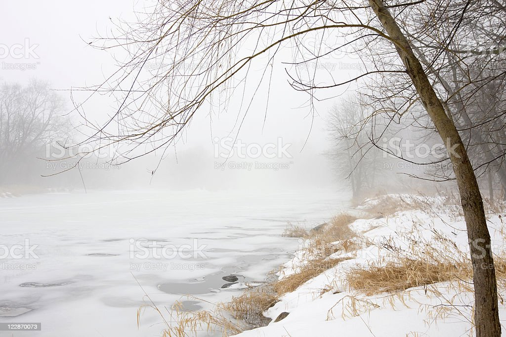 Riverbank in Winter Fog royalty-free stock photo