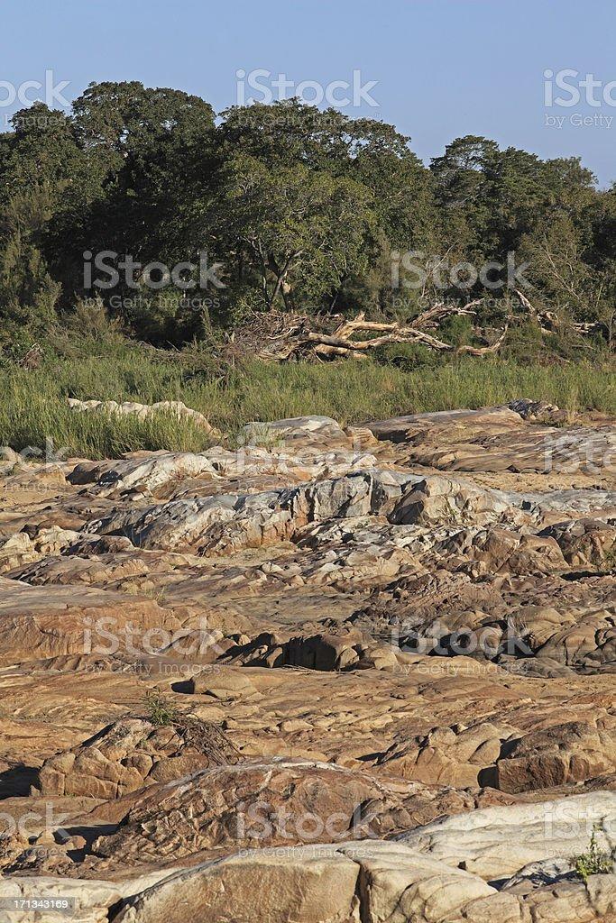riverbank stock photo