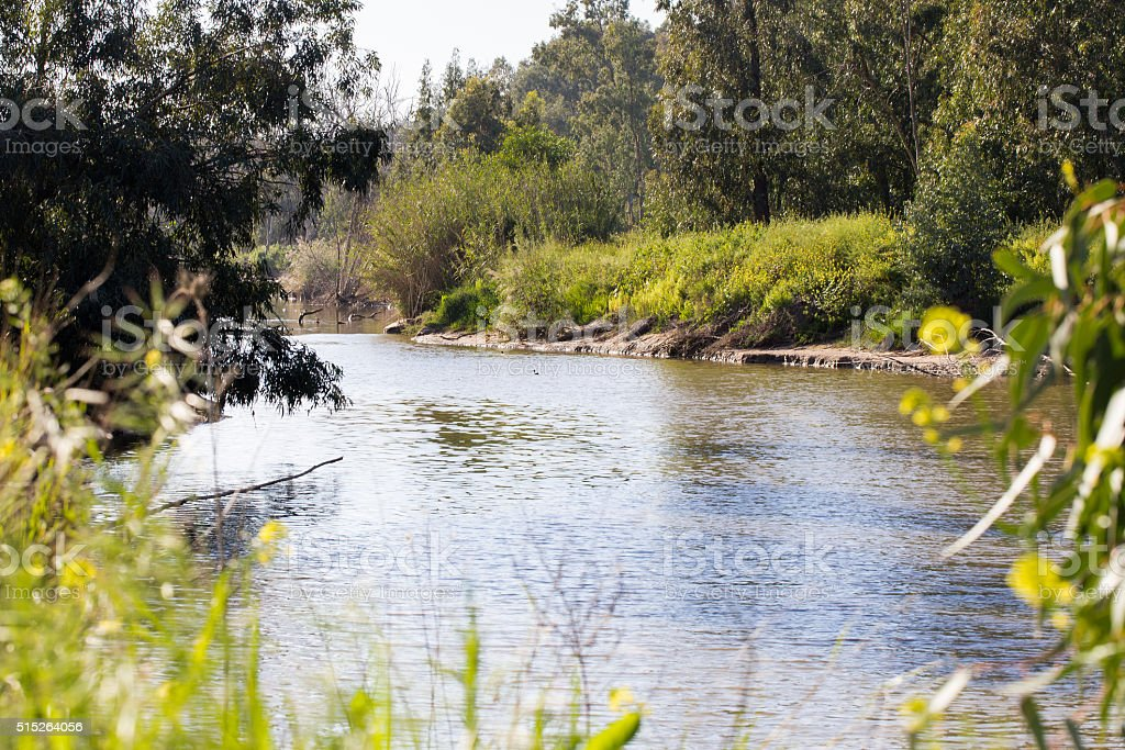 Riverbank Sorek river spring green blossom. stock photo