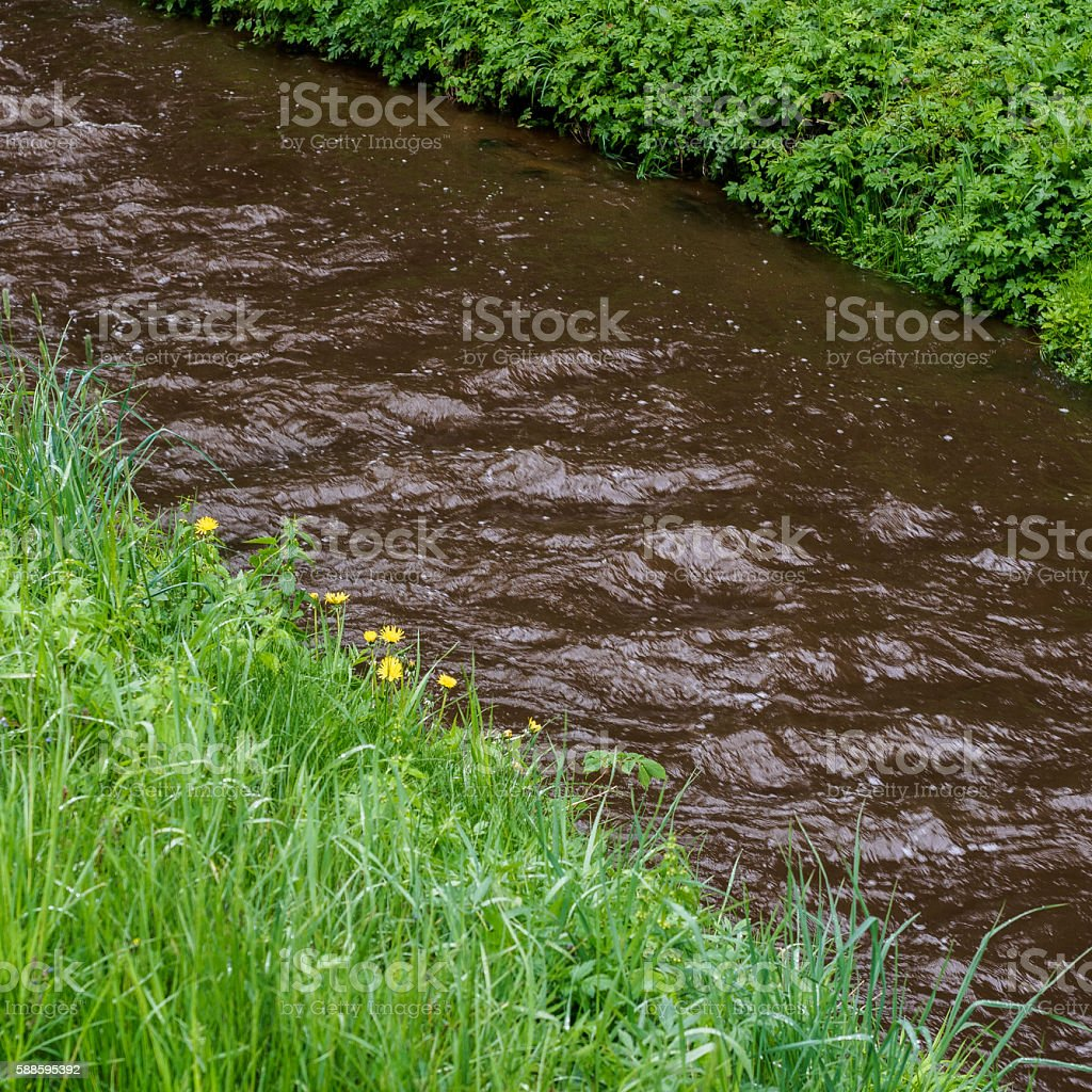Riverbanks stock photo
