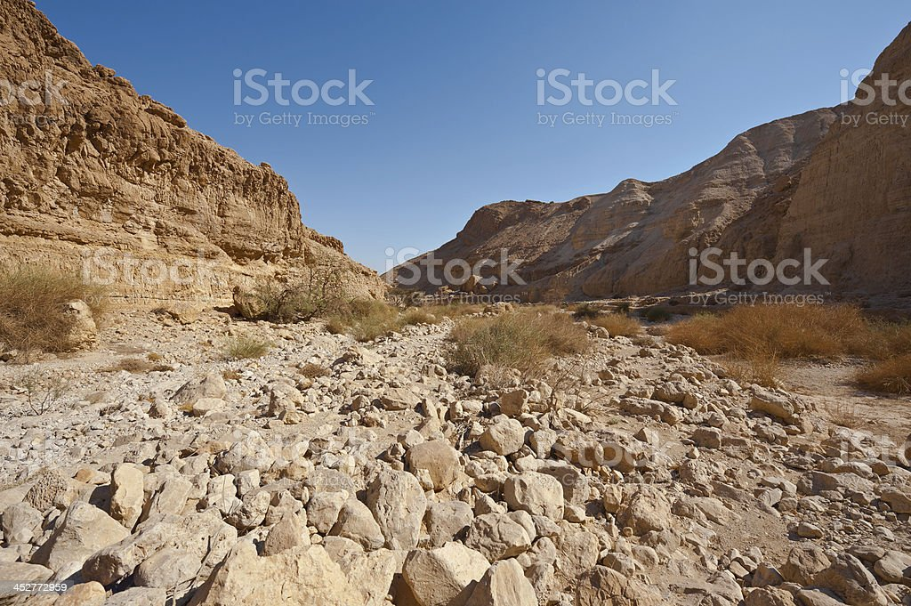 Riverbed royalty-free stock photo
