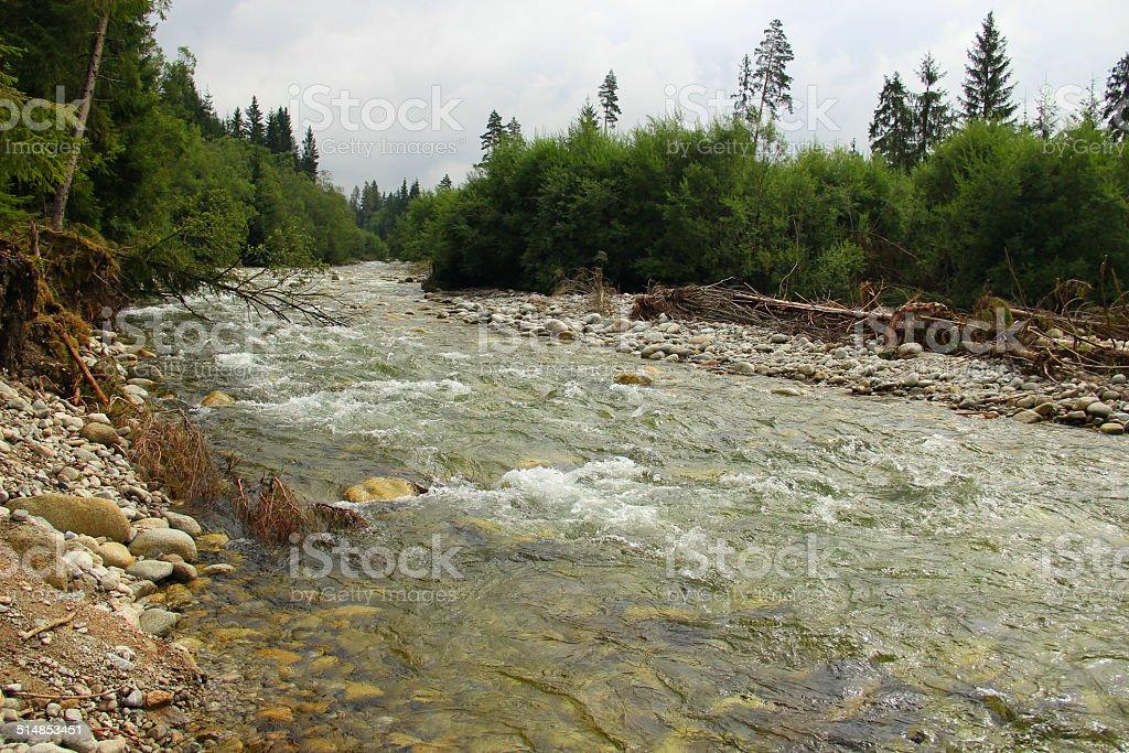 Riverbed wild river stock photo