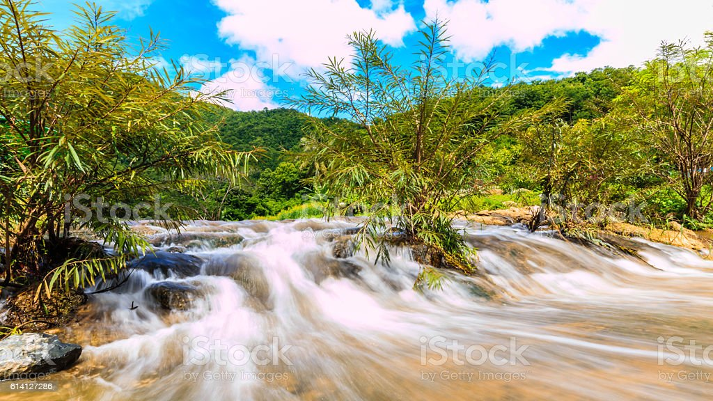 Rivers, streams, in big forests are abundant. stock photo