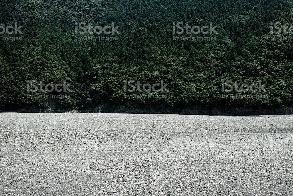 Rivière et la forêt. photo libre de droits