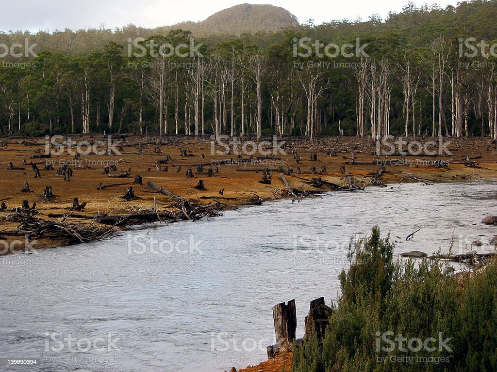 riverside deforestation or drought effect. stock photo