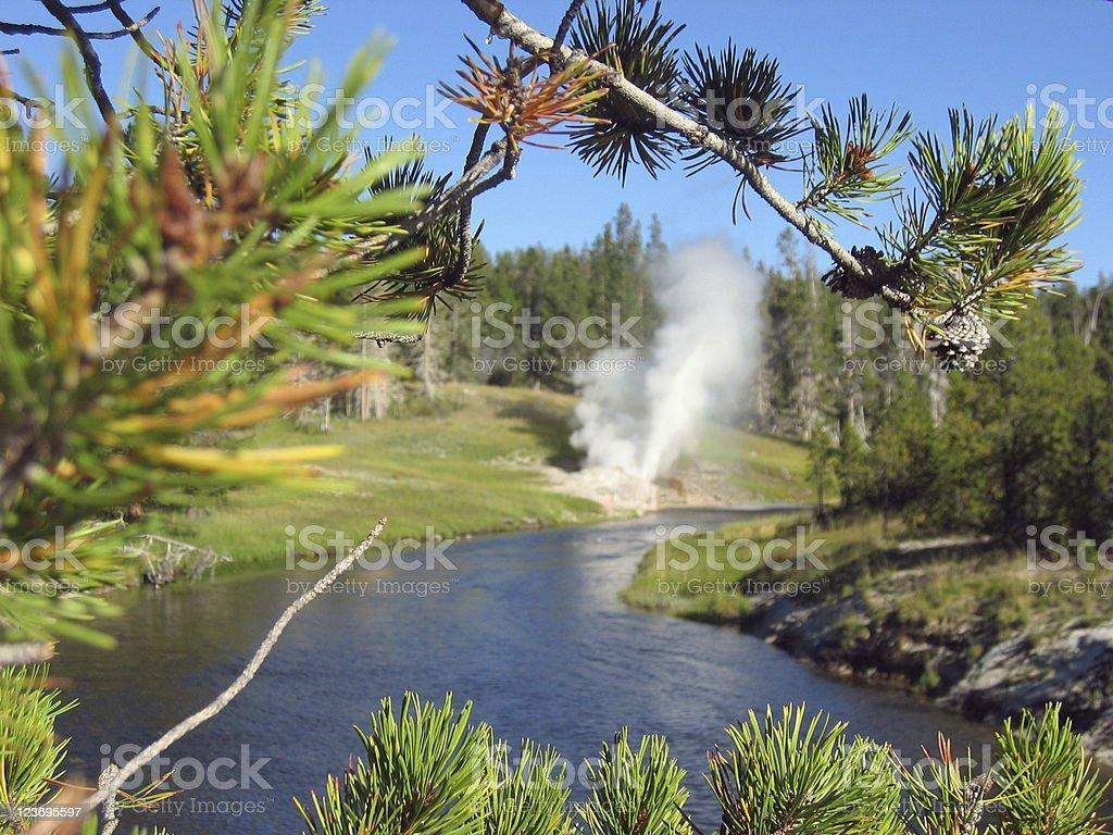 Riverside Geyser, Yellowstone National Park stock photo