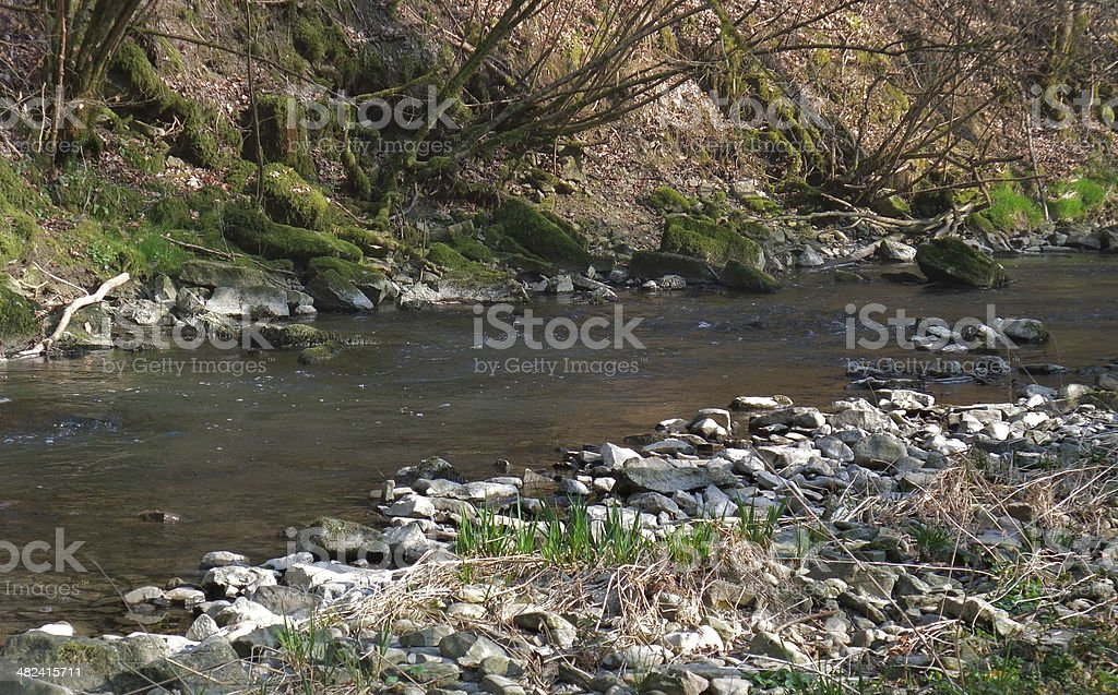 riverside scenery stock photo