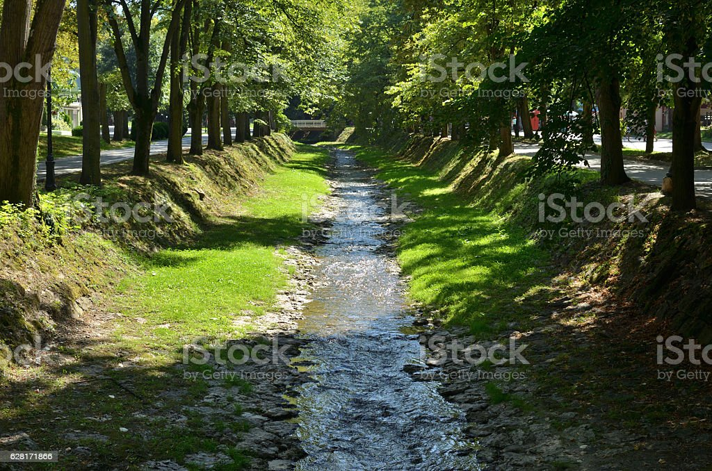 Rivulet and Trees stock photo