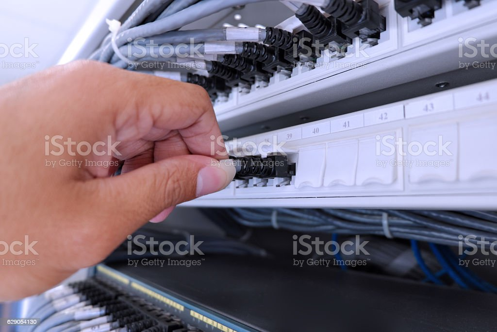 rj45 plug for connected to patch panel stock photo