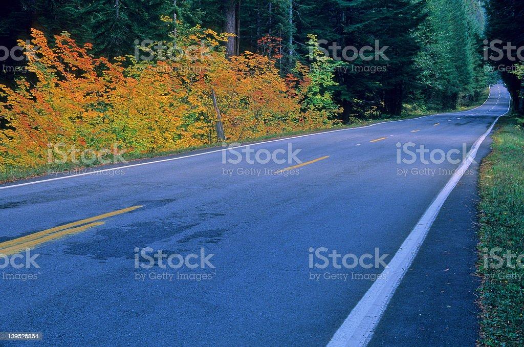 Road 11 royalty-free stock photo