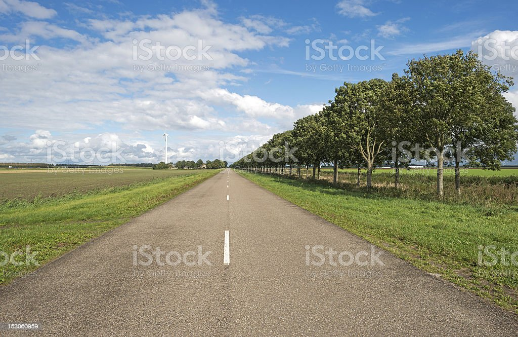 Road along a field in summer royalty-free stock photo