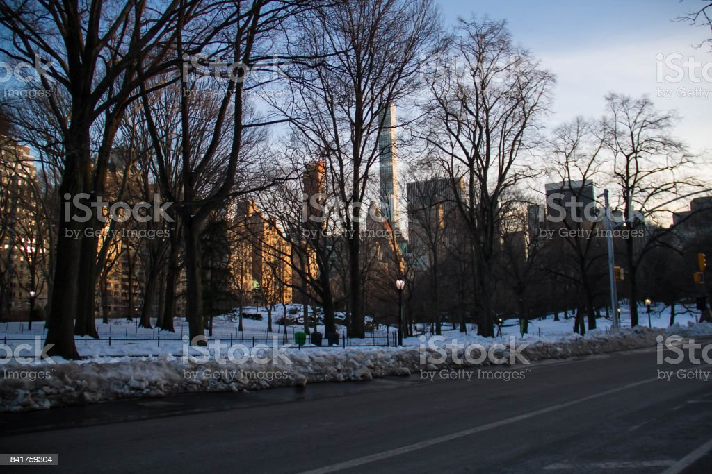Road and trees at Central Park and buildings in winter stock photo