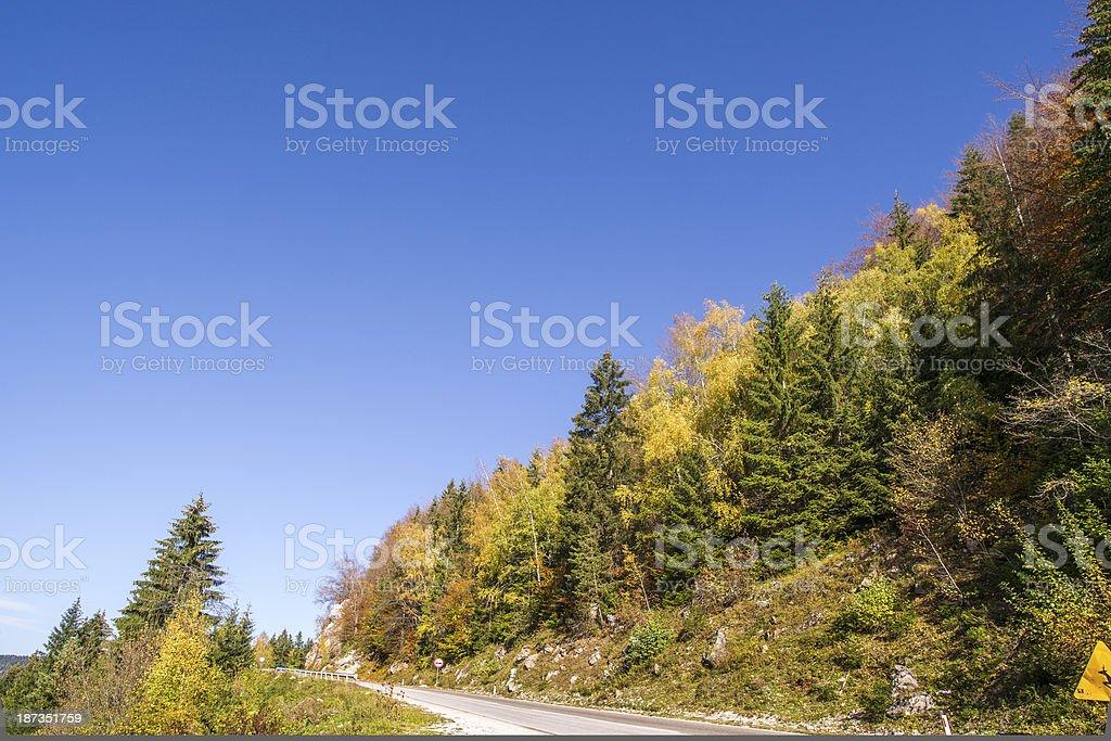Road autumn - Stock Image stock photo
