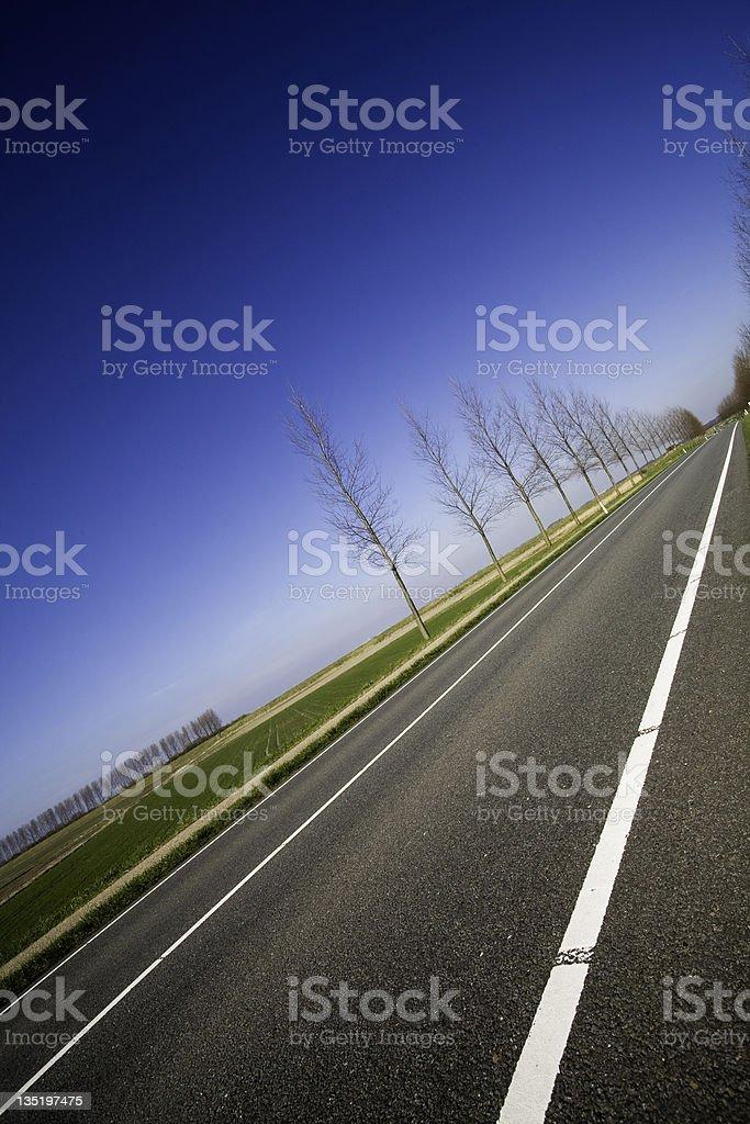 road backdrop 2 royalty-free stock photo
