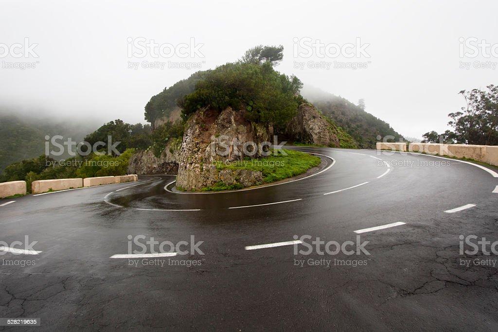 Road bend at Tenerife. stock photo