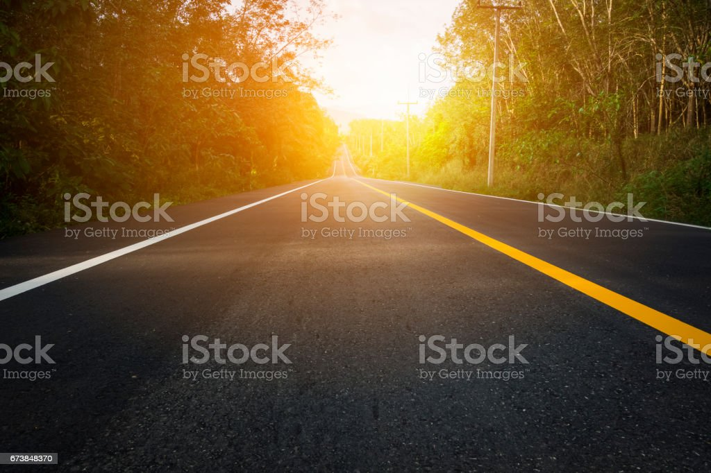 road between trees stock photo