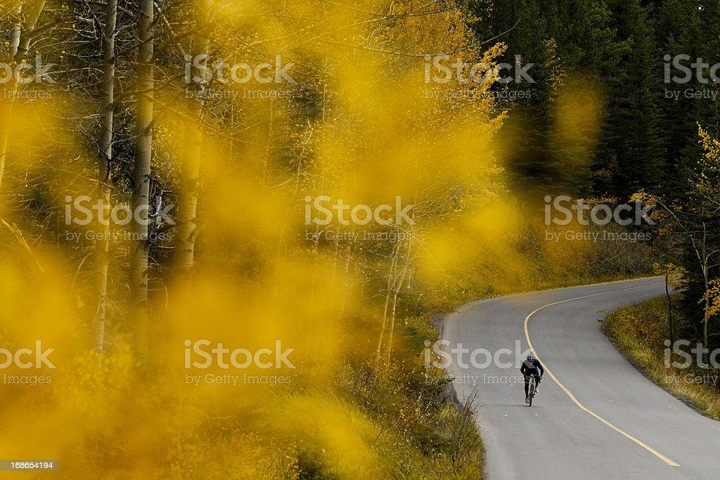 Road Biking Canada royalty-free stock photo