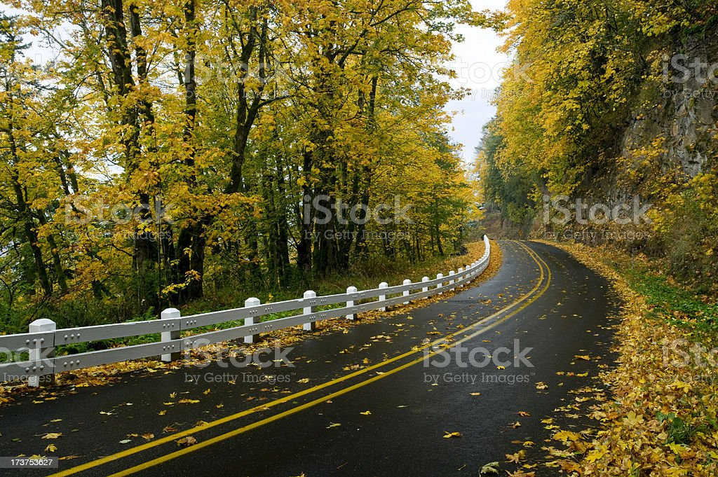 Road covered in fallen Autumn leaves royalty-free stock photo