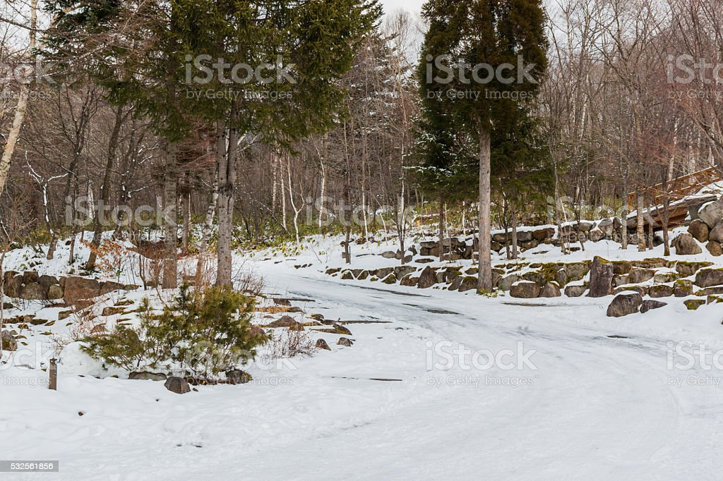 Road curve in forest, covered with snow. stock photo
