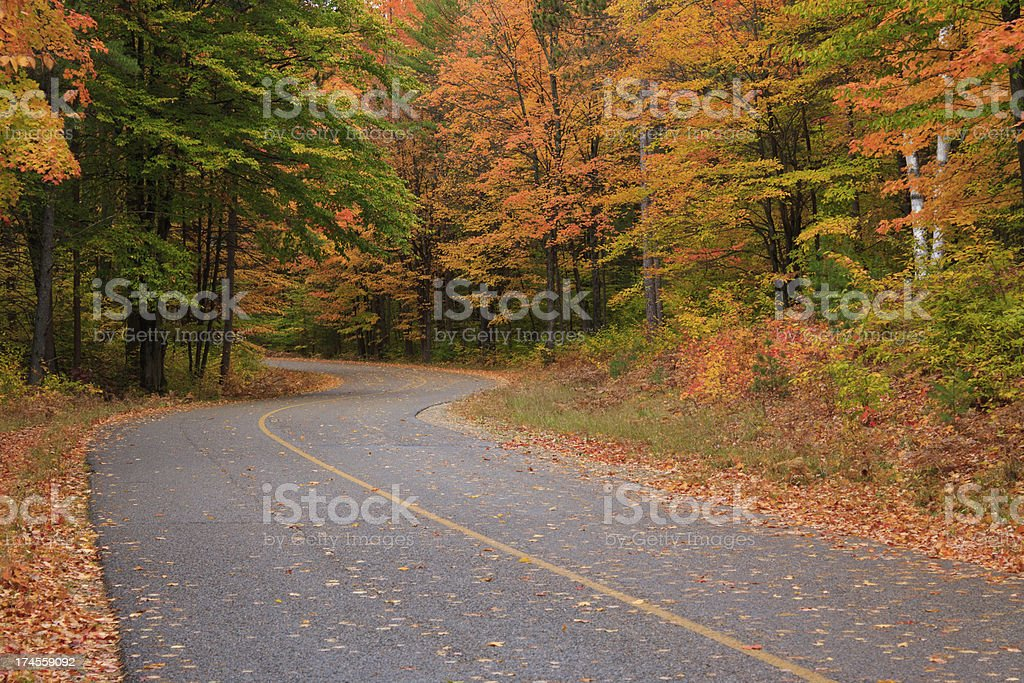 Road curves through Fall Colors stock photo