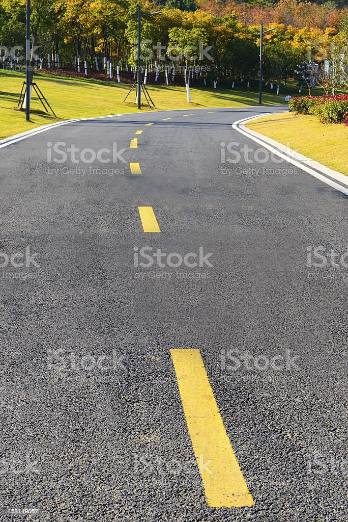 Road extends to the woods royalty-free stock photo