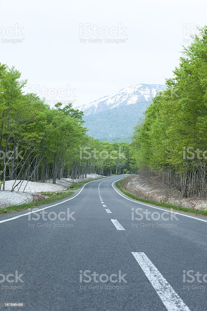 Road in a early spring mountain royalty-free stock photo