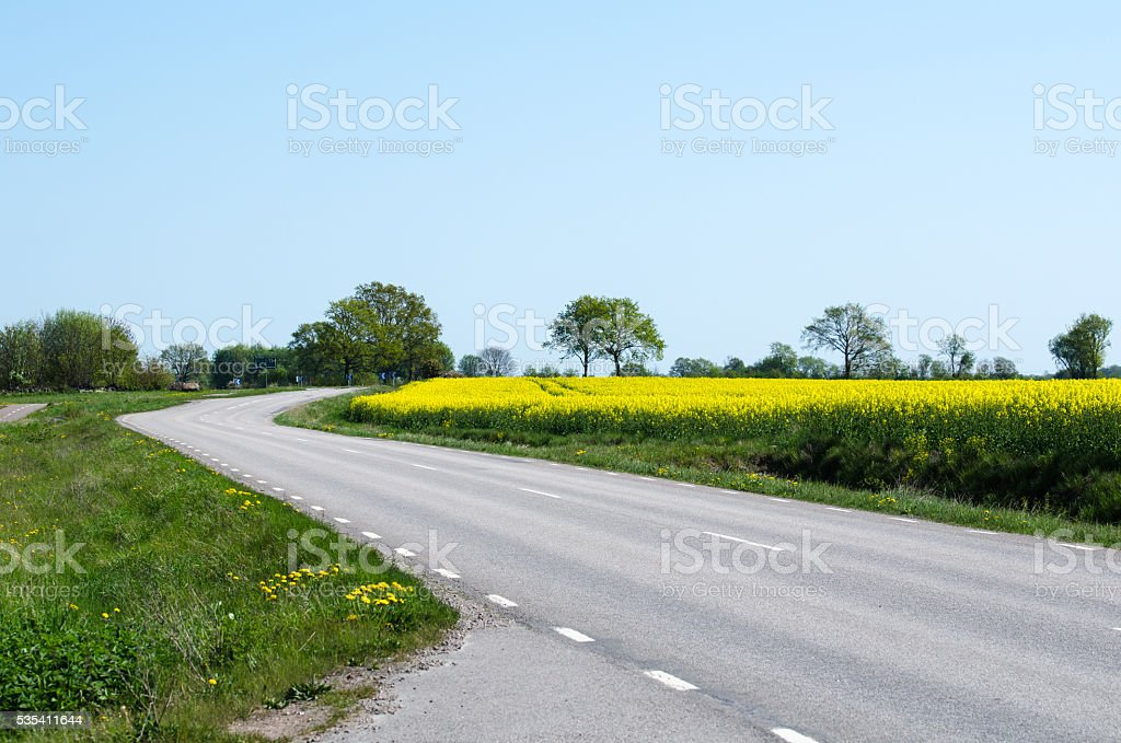 Road in a spring colored landscape stock photo