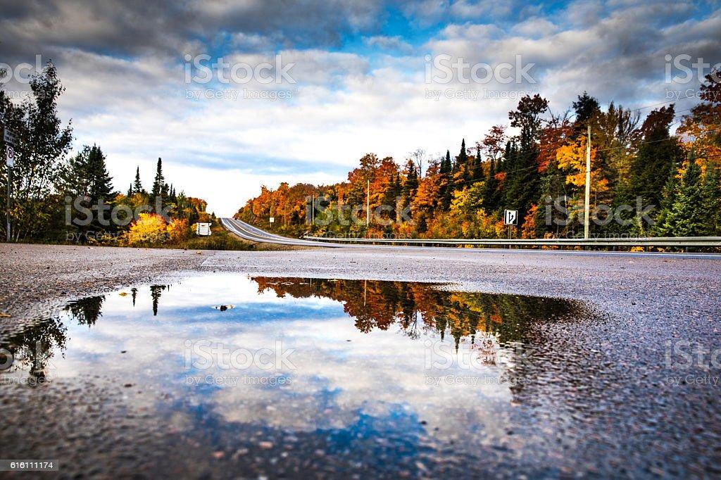 Road in Algonquin Park, Ontario - Canada stock photo