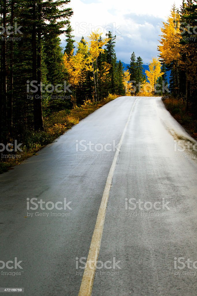 Road in Banff National Park royalty-free stock photo