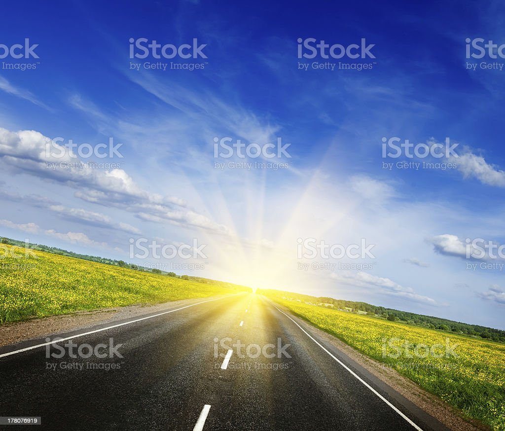 Road in blooming spring meadow royalty-free stock photo