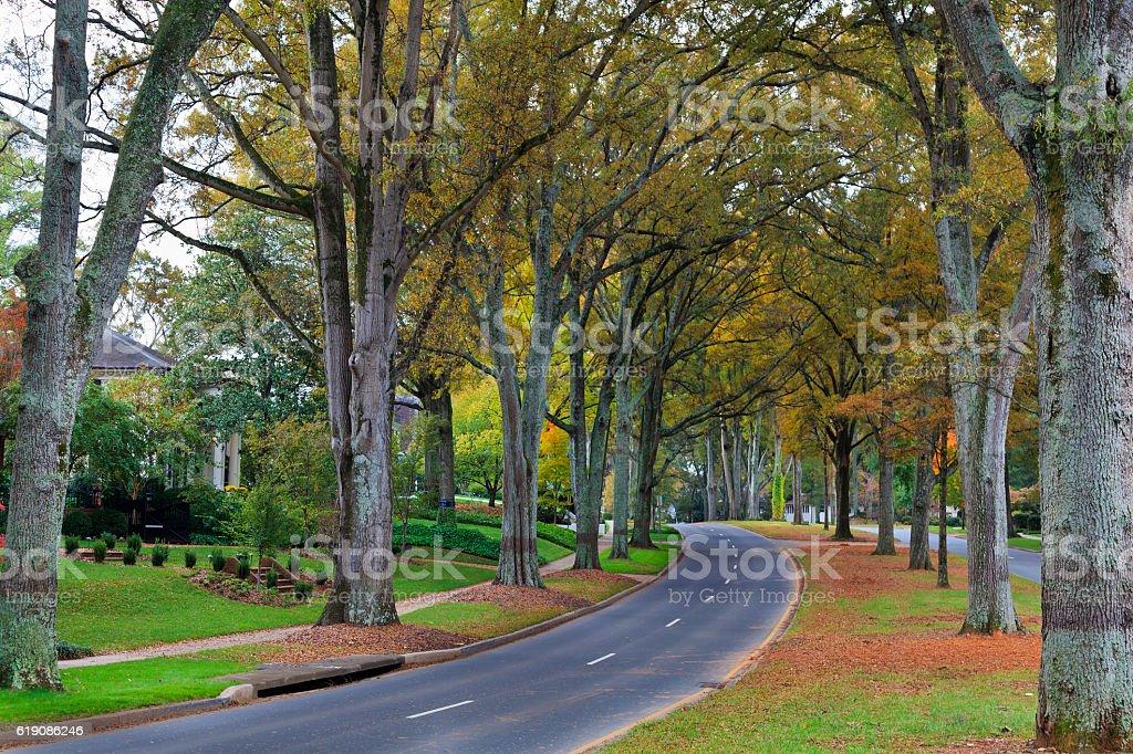Road in Charlotte, North Carolina stock photo