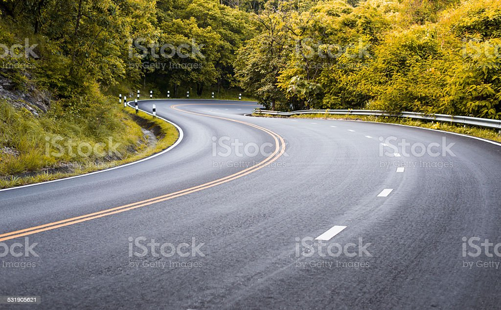 road in deep forest stock photo