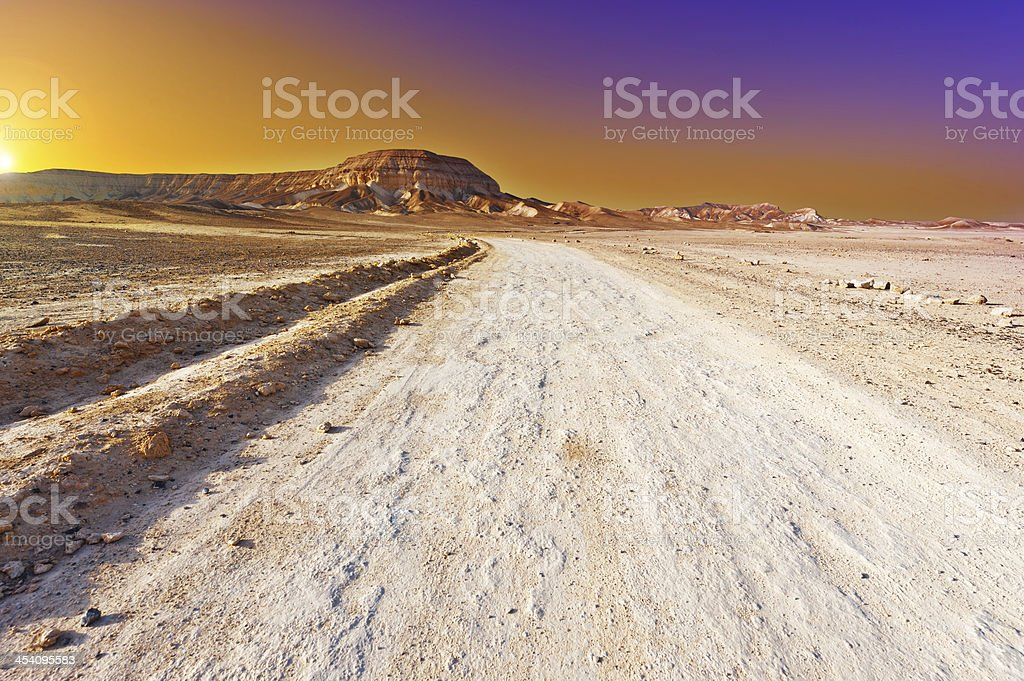 Road in Desert royalty-free stock photo