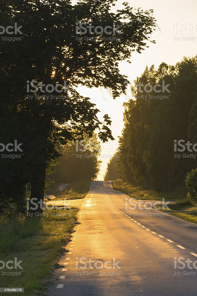Road in direct evening light stock photo