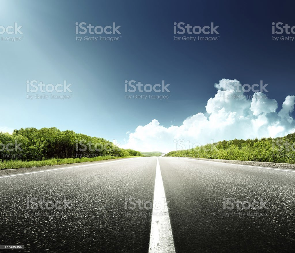 road in forest stock photo