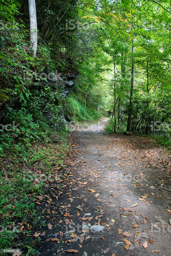 Road in Great Smoky Mountains National Park stock photo