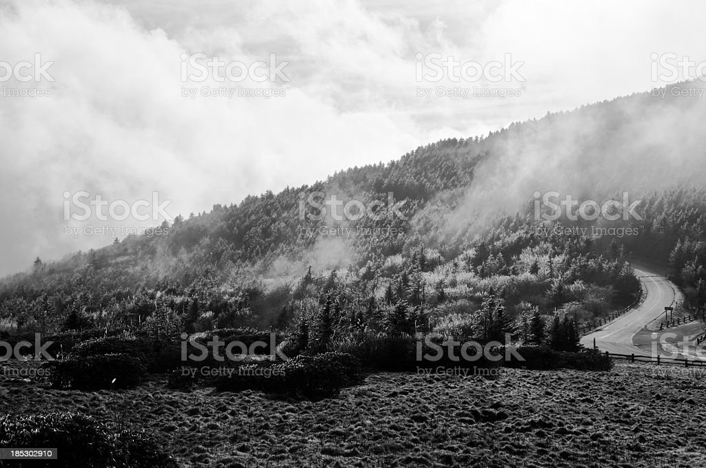 Road in misty mountains - Carver's Gap, Roan Mountain royalty-free stock photo