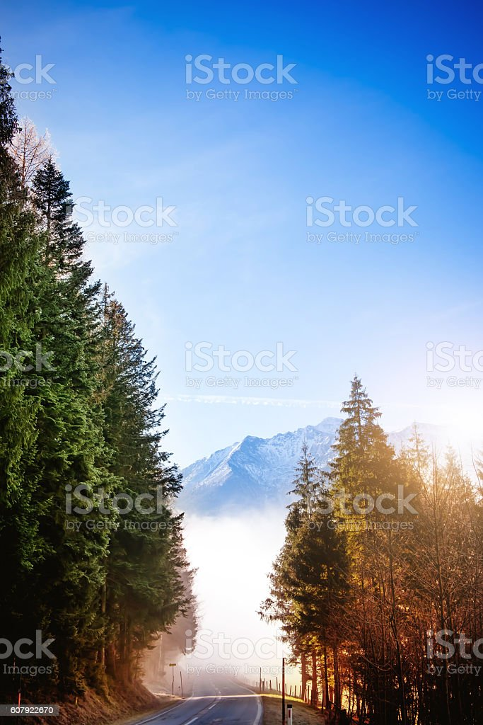 Road in mountains in late autumn stock photo
