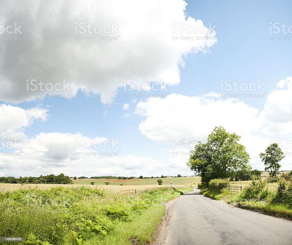 Road in Nature stock photo