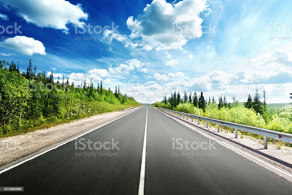 road in north forest stock photo