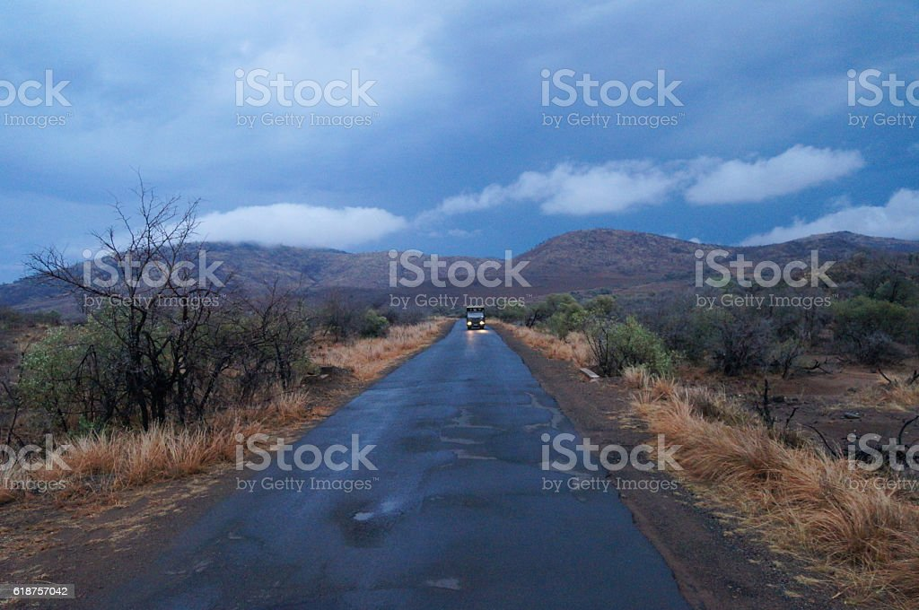 Road in Pilanesberg National Park, South Africa. stock photo