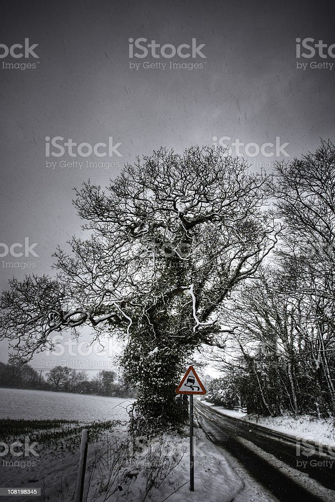Road in snow storm royalty-free stock photo