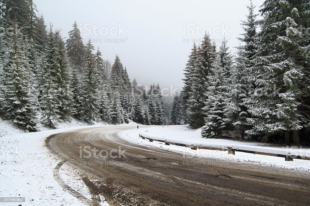 Road in Snowy Forest stock photo