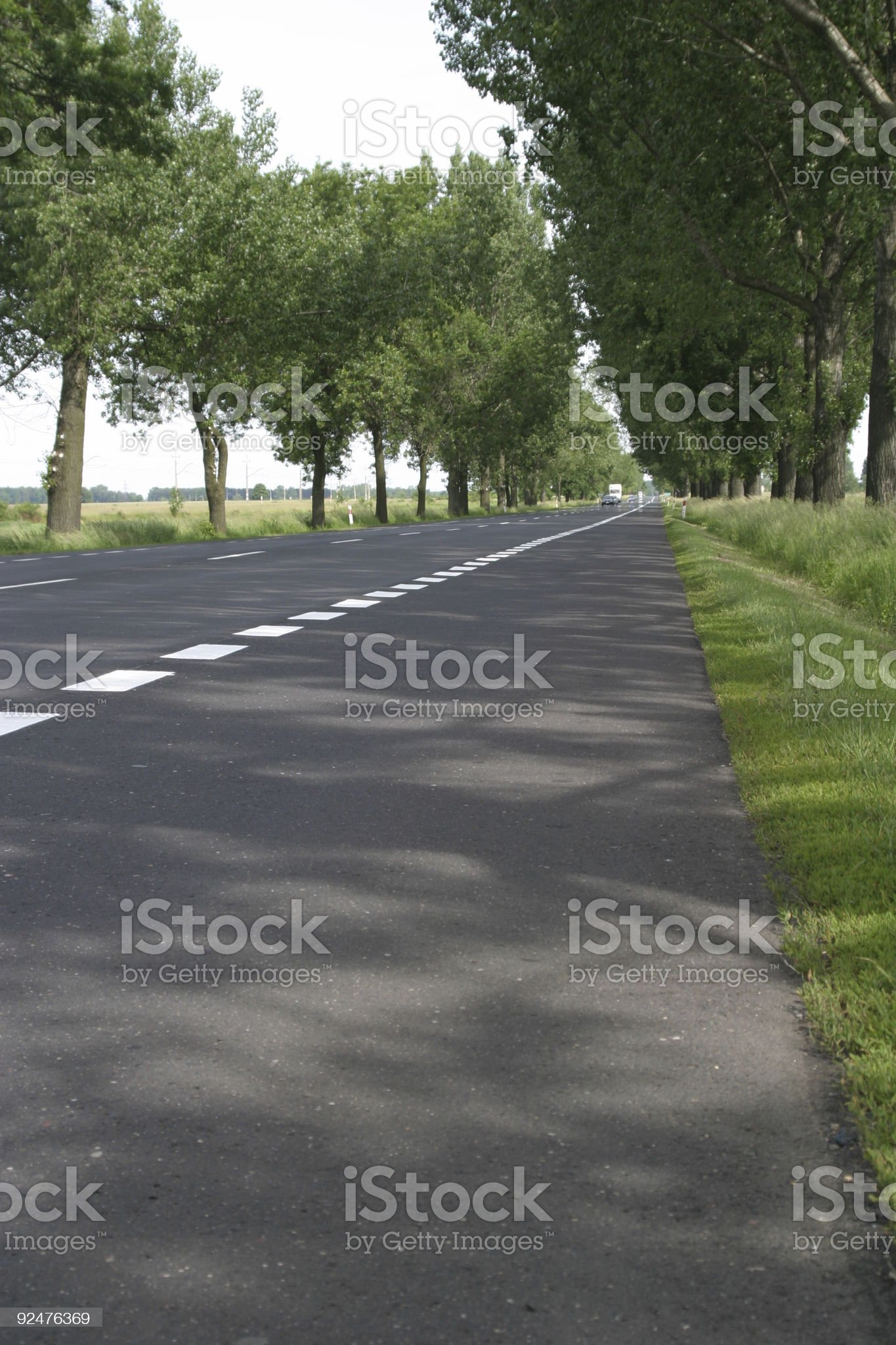 road in spring royalty-free stock photo