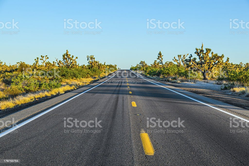 road in sunset royalty-free stock photo