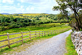 Road in the irish countryside