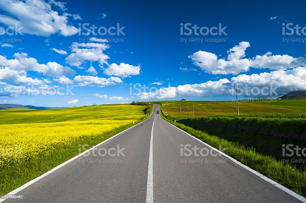 Road in the nature royalty-free stock photo